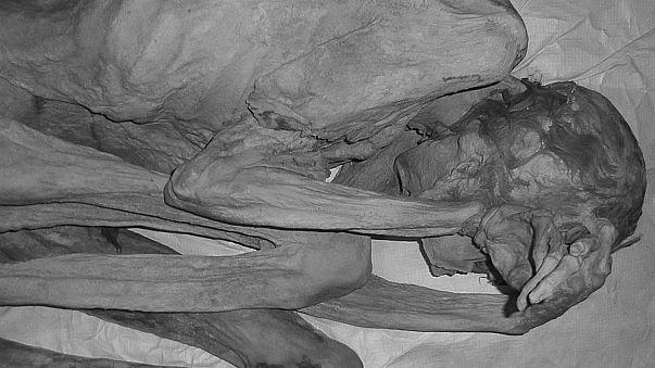 Les plus vieux tatouages figuratifs découverts sur des momies