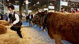 Mercosur : les agriculteurs français inquiets d'un éventuel accord