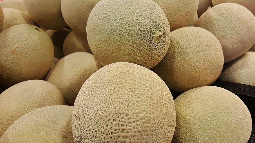 Melon listeria kills three, 12 others ill in Australia