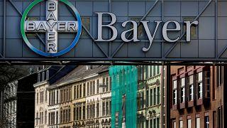 Avrupalı çevreciler Bayer Monsanto anlaşmasının iptalini istiyor