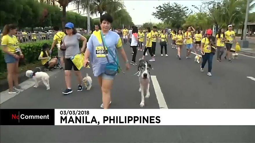 Filippine, oltre mille partecipamnti per la corsa dei cani di Manila