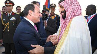 مصر تقدم ألف كيلومتر من جنوب سيناء لمشروع مدينة نيوم