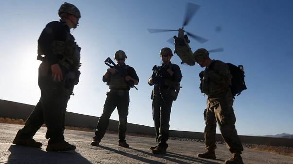"""الجيش الأمريكي: أساءنا معاملة """"كلاب الحرب"""""""