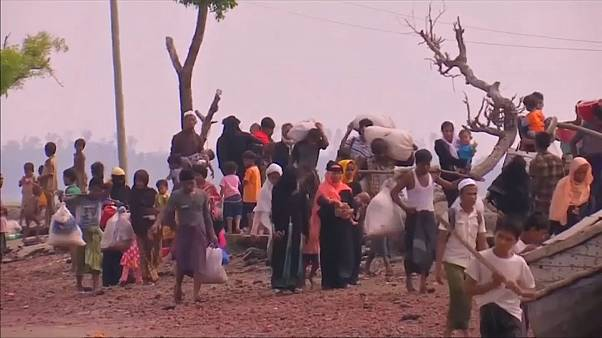 'Ethnic cleansing' of Rohingya continues says UN envoy