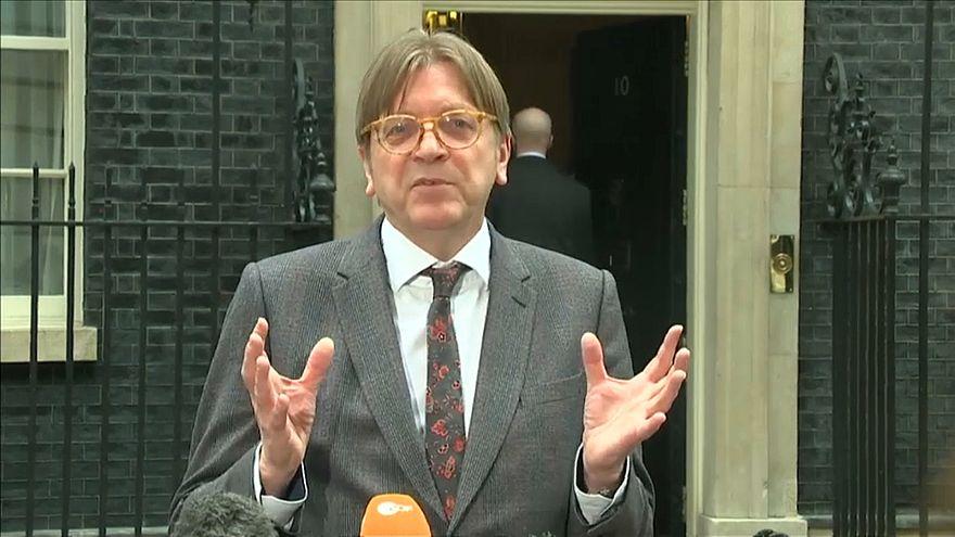 Guy Verhofstadt, European Parliament Brexit negotiator