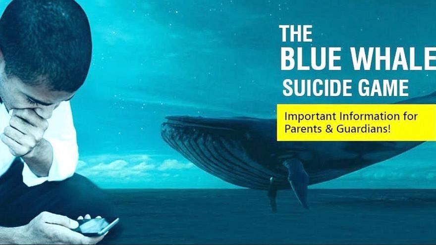 تونس تحجب تطبيق الحوت الأزرق الإلكتروني لخطورته