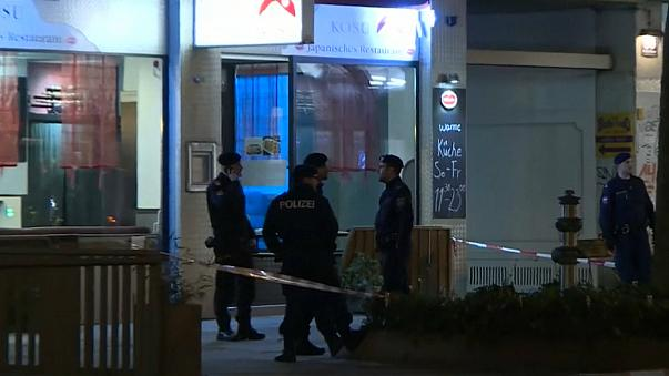 Afghan man 'admits' Vienna knife attacks