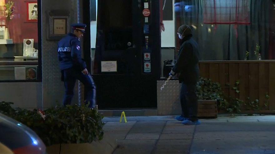 Два нападения в Вене