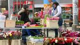 """""""Schmutzig und kriminell"""": Aufreger-Video über Wien"""