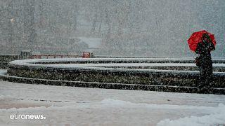 أحد المشاة يعبر سنترال بارك خلال عاصفة ثلجية في نيويورك، الولايات المتحدة