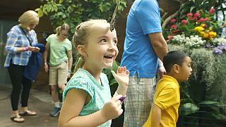 Hayvanat bahçesindeki binlerce kelebek ziyaretçi akınına uğradı