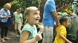 Miles de mariposas en el Zoo de San Diego, en California