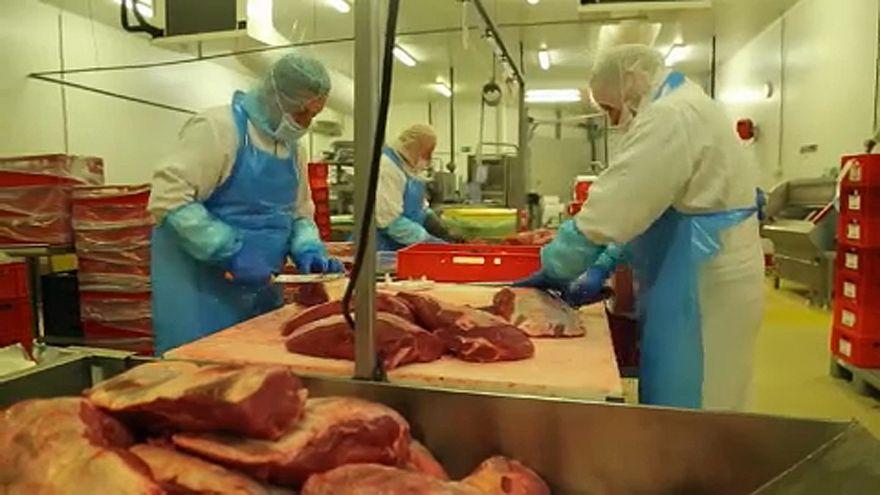 Escándalo alimentario en Bélgica