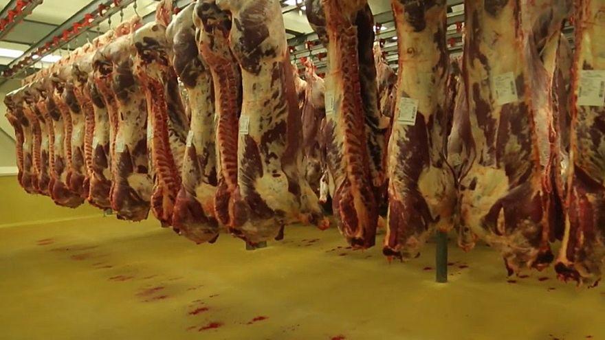 Rohadt húst árultak a legnagyobb belga húselőállítónál