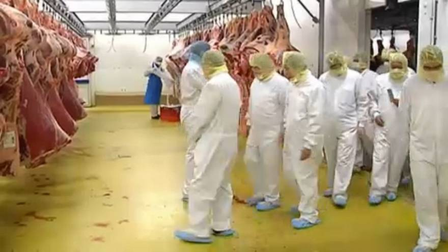 """Из Бельгии в Косово """"экспортировали тухлое мясо"""""""
