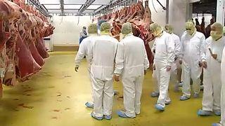 Belgique : nouveau scandale sur la viande de boeuf