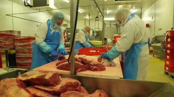 Fábrica de transformação de carne