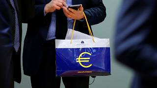 French eurozone plans to hit German speed bump