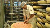 Agroscope muss sparen: Käsevielfalt in Gefahr?