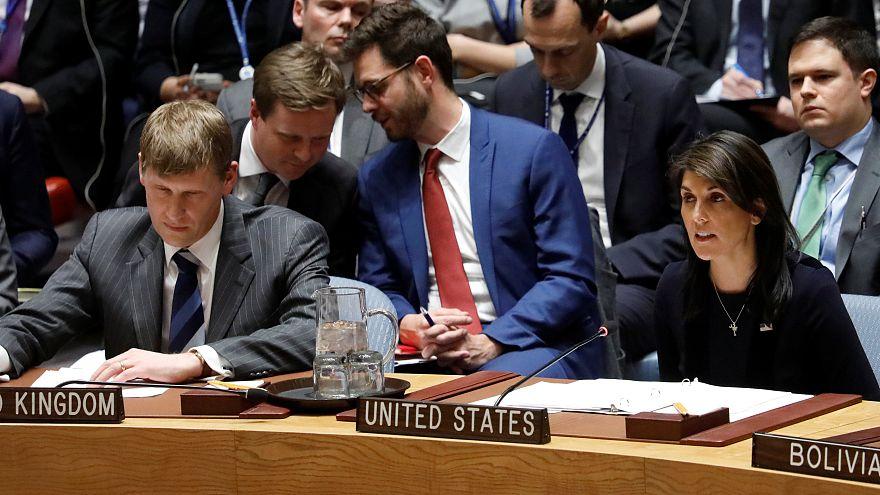 Nikki Haley BM Güvenlik Konseyi'nde