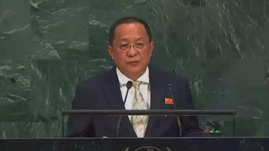 وزير خارجية كوريا الشمالية يزور السويد يومي 15 و16 مارس/ أذار لإجراء محادثات
