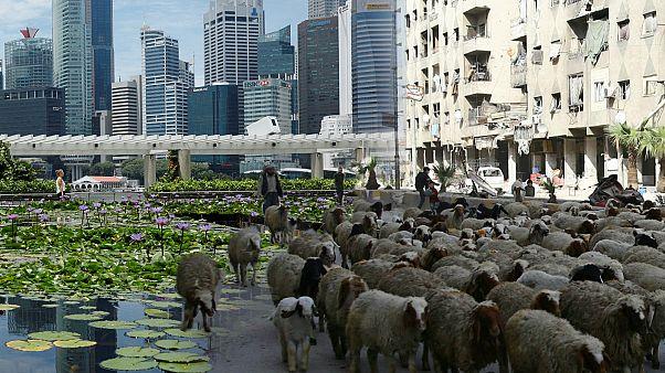 المدن الأغلى تكلفة للمعيشة في العالم