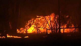 Australien: Heftige Waldbrände und Wirbelsturm