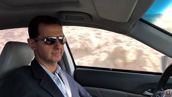 الأسد بالسيارة