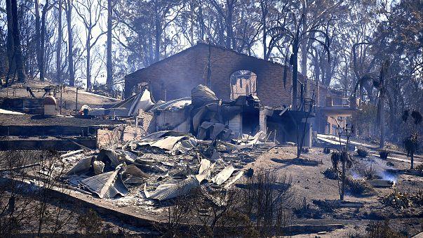 Buschfeuer zerstören zahlreiche Häuser in Australien