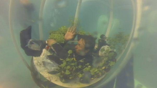 باغ زیردریایی؛ راهحلی نوآورانه برای کشاورزی در کشورهای خشک