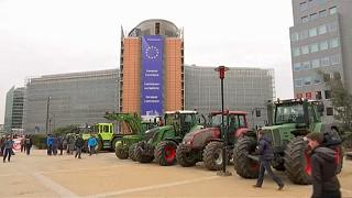 Bauernproteste gegen geplante EU-Agrarreform