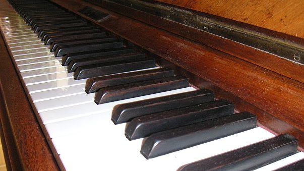 Twitterer trauern um klavierspielende Katze Bento (9†)