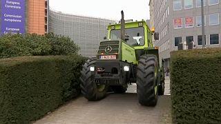 Belçikalı çiftçiler gelecekleri için endişeli