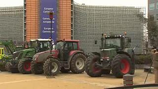 Сложности аграрной реформы в ЕС