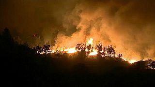 Le Portugal va indemniser les familles de victimes des incendies