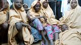Nigeria: Scores of kidnapped schoolgirls are freed