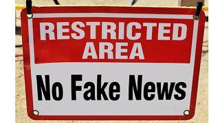 """David Puente """"interventi da siti esteri durante le elezioni considerati la norma"""""""