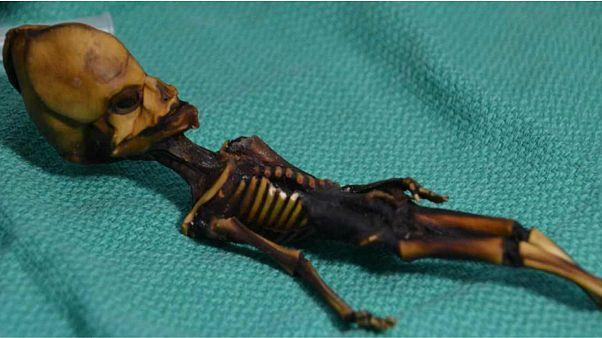 اسکلت کوچک کشف شده در شیلی «آدم فضایی» نیست