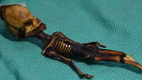 La triste historia detrás del falso alienígena de Atacama