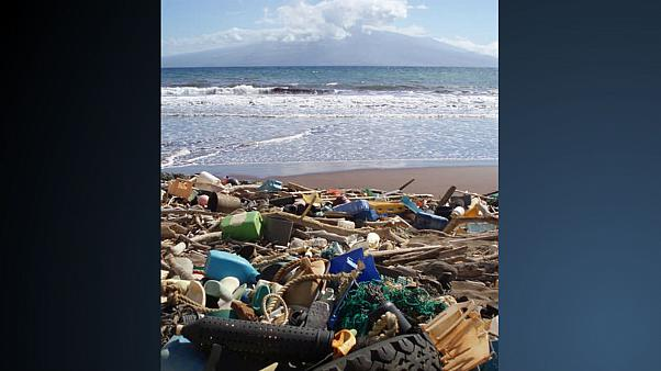 The beach at Kanapou Bay, Hawaii, collects debris from the Pacific