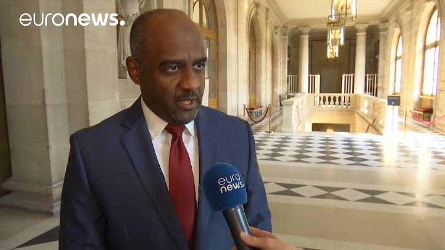 Saudi general in charge of Yemen campaign speaks to euronews