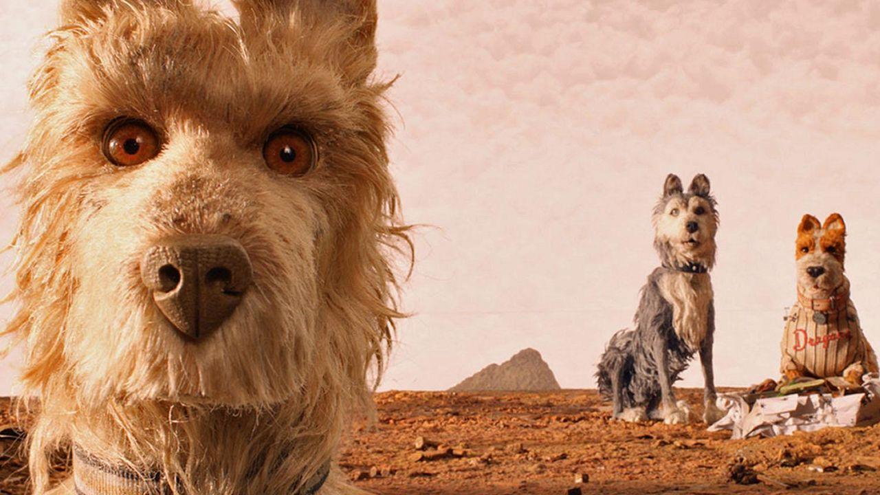 Os Cães, a Ilha e a obsessão pelo detalhe em exposição