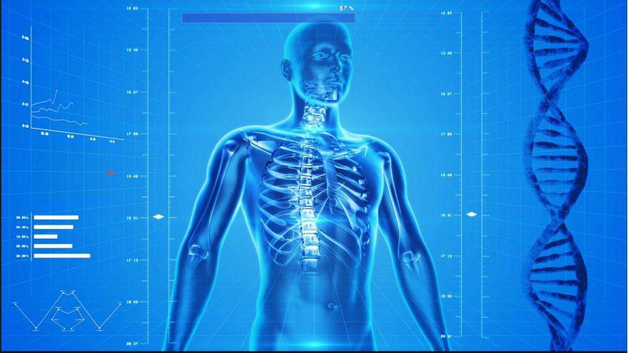 ما هو العضو الجديد الذي اكتشفه العلماء في جسم الإنسان؟ وما هي وظيفته؟