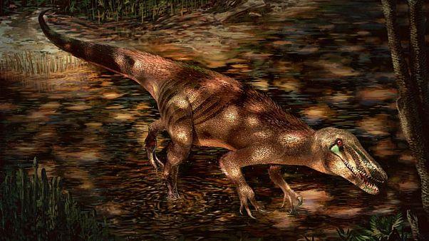 صورة توضيحية للديناصور تراتاينيا.