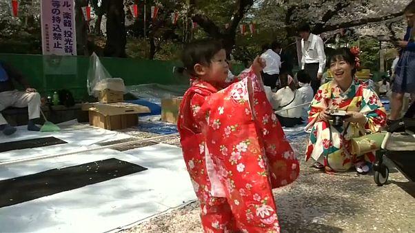 شکوفههای زودهنگام گیلاس در ژاپن