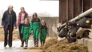 Il premier britannico Theresa May visita un'azienda agricola in Ulster