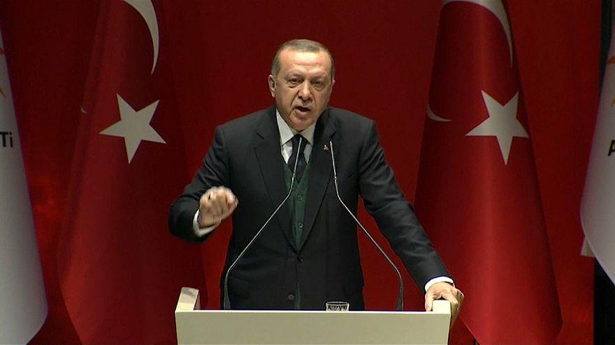 Erdogan dismisses France's offer to mediate wirth Kurds