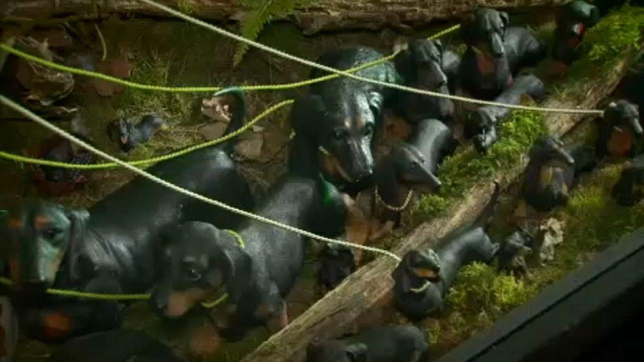Γερμανία: Μουσείο για τον σκύλο-λουκάνικο