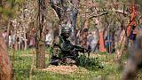 Cammu Keşmir'de çatışmalar: Onlarca ölü ve yaralı