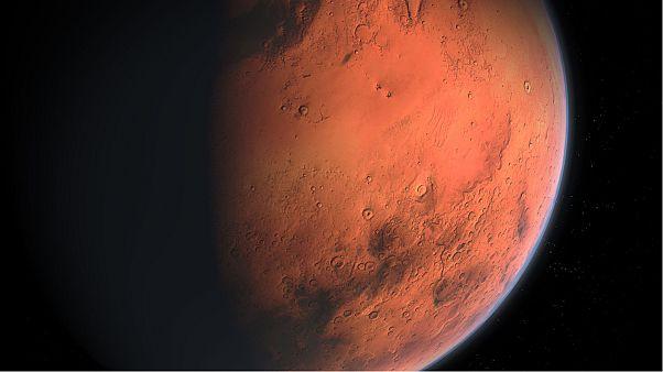 NASA develops plan to send robot bees to Mars